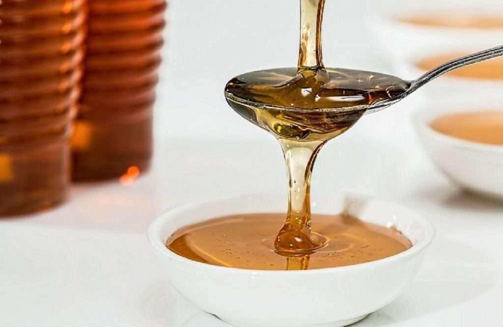 Μέλι | Ποιες είναι οι προοπτικές του ελληνικού μελιού στην ολλανδική αγορά